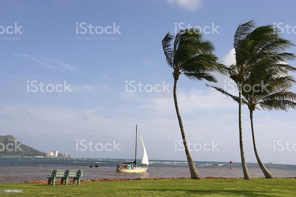 Scenic view onto the pacific ocean (Hawaii, USA) royalty-free stock photo