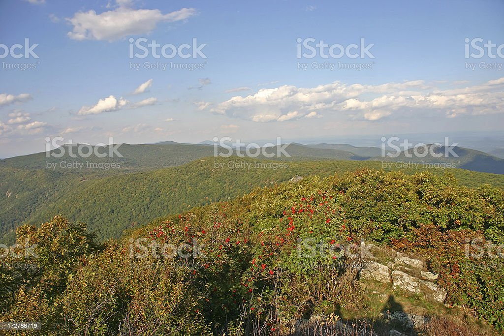 Scenic view over Shenandoah National Park (USA) royalty-free stock photo