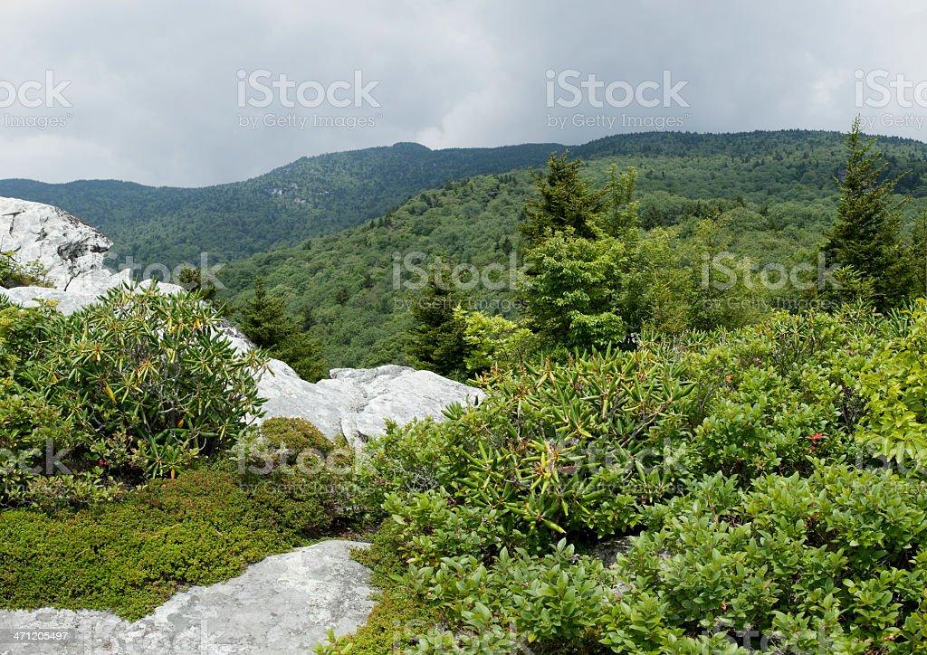 Scenic View Rough-Ridge Trail Blue Ridge Parkway National Park royalty-free stock photo