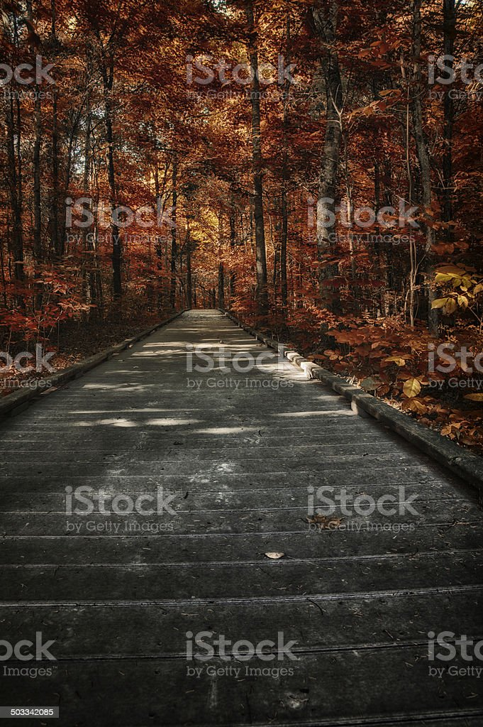 Scenic Walkway stock photo