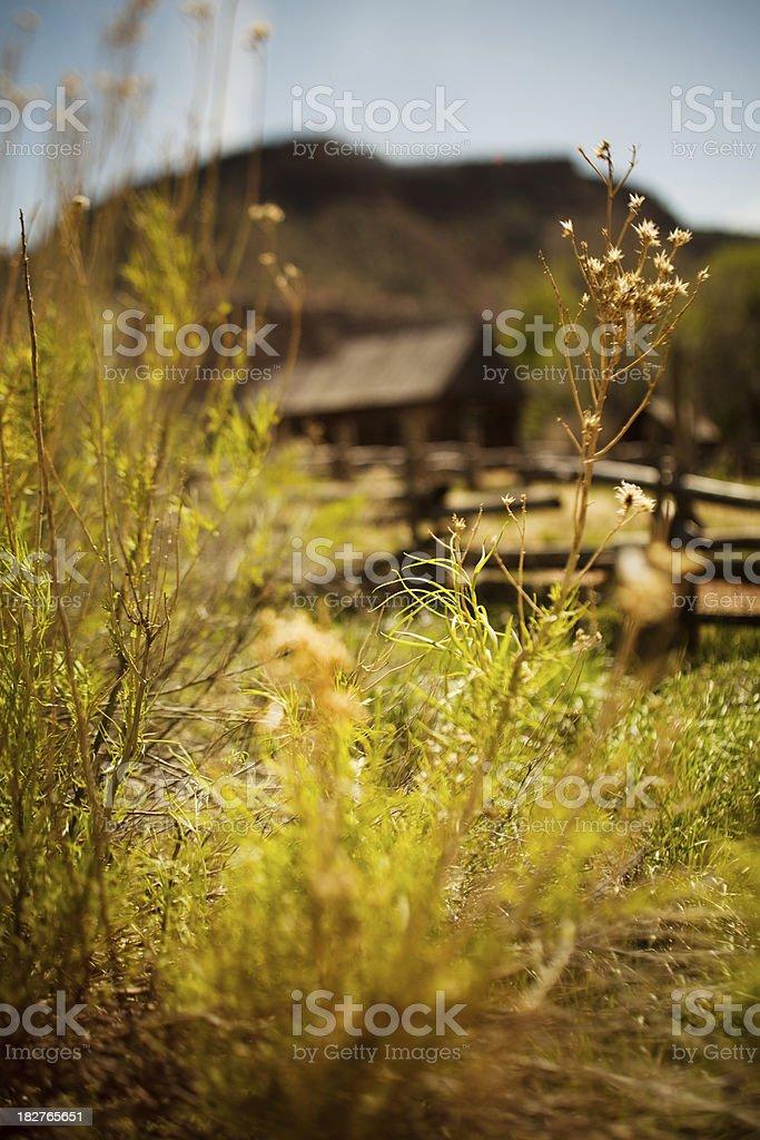 Scenic wild west stock photo