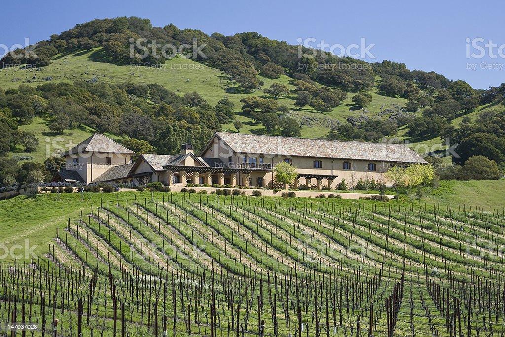 Scenic Winery royalty-free stock photo