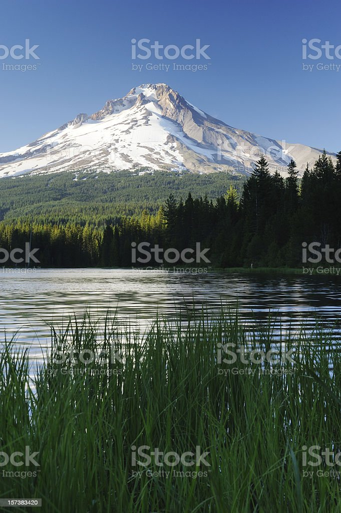 Scenics at Mt Hood Area royalty-free stock photo