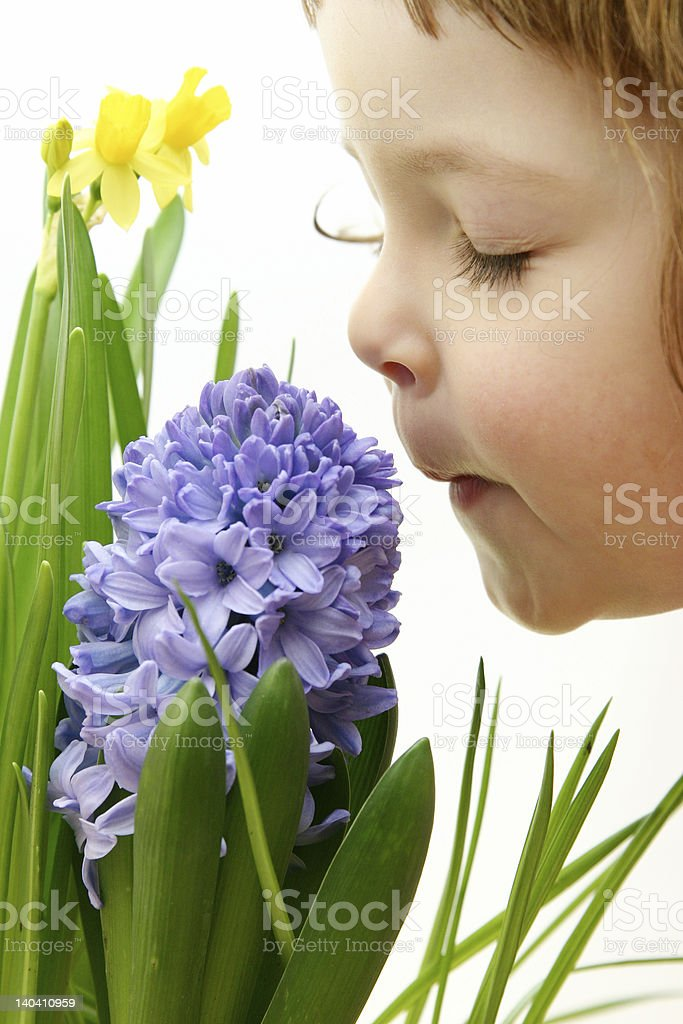scent of spring stock photo