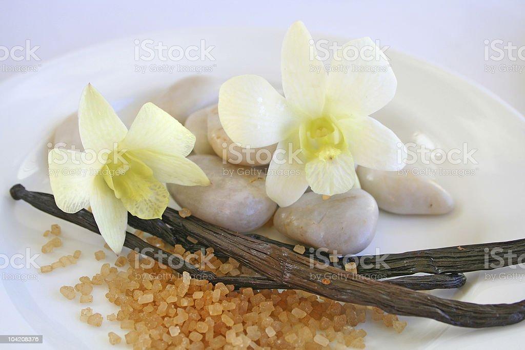 Scent of Vanilla royalty-free stock photo