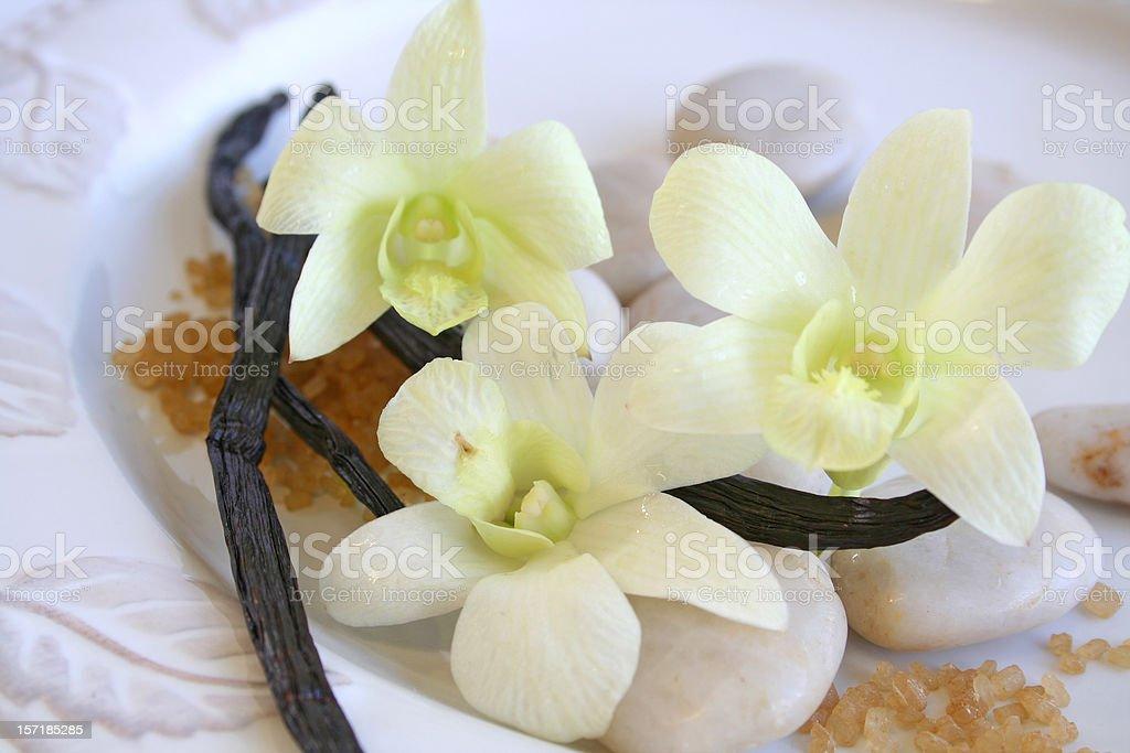 Scent of Vanilla stock photo