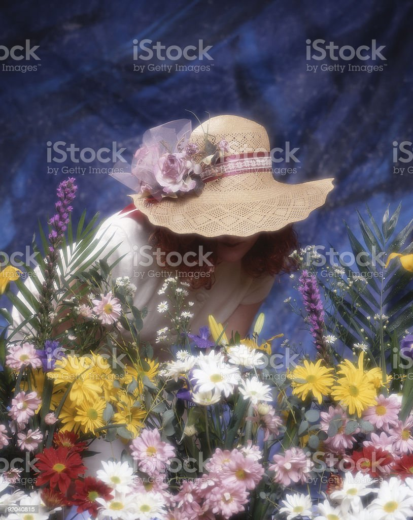 Scents of spring royalty-free stock photo