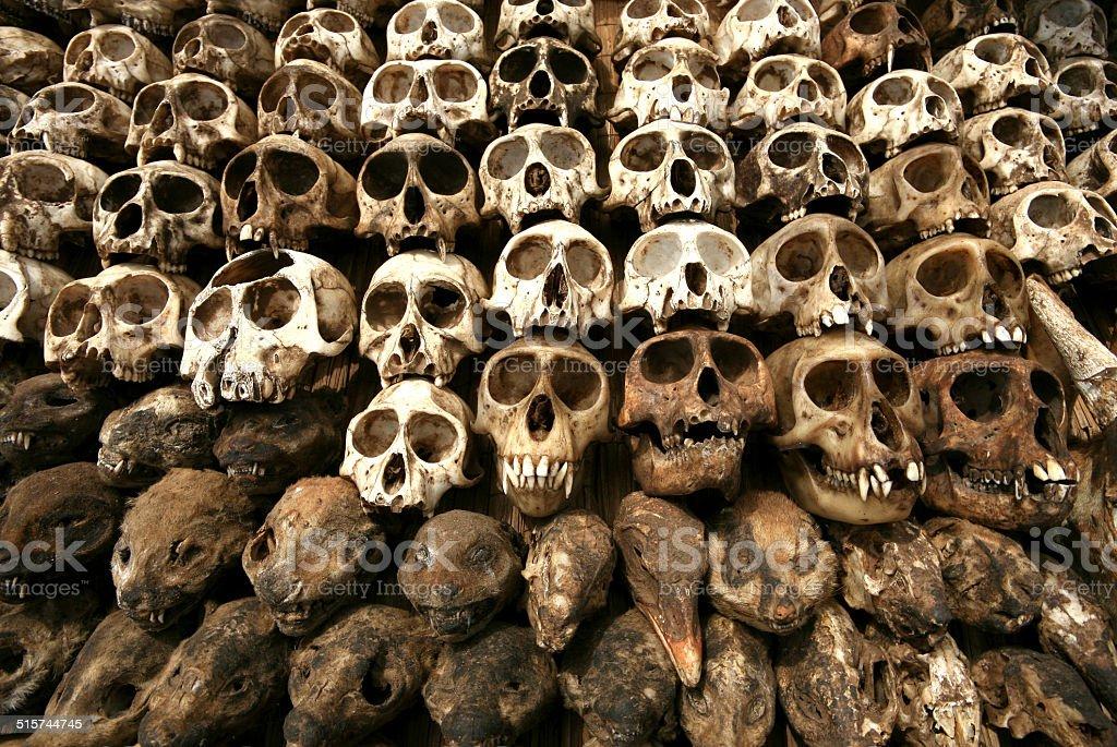 Sch?del & Voodoo Utensilien, Lom?, Togo stock photo