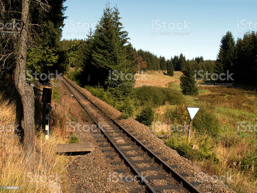 Schienen der Schmalspurbahn im Harz zwischen Sorge und Elend stock photo