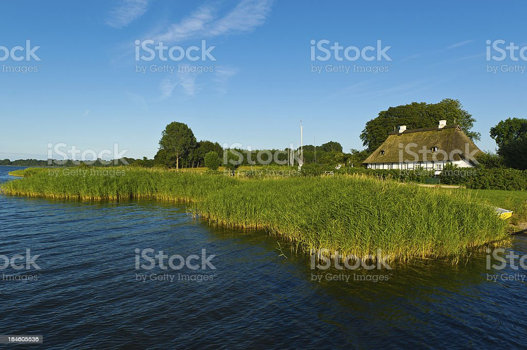 Schlei thatched roof house at riverbank with reed stock photo