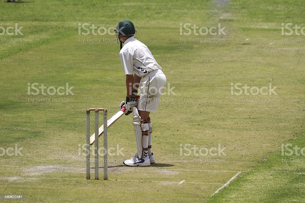 School boy cricket player preparing stock photo