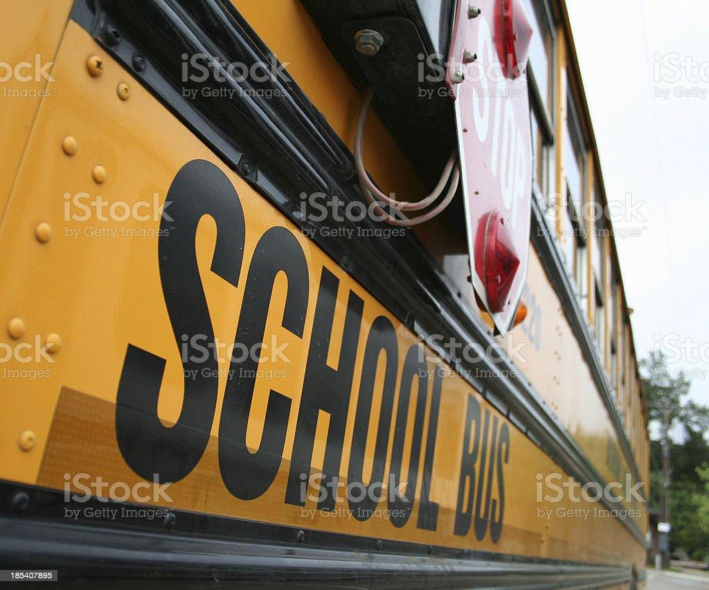 School Bus 1 stock photo