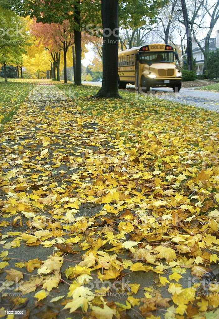 School Bus in the Fall royalty-free stock photo