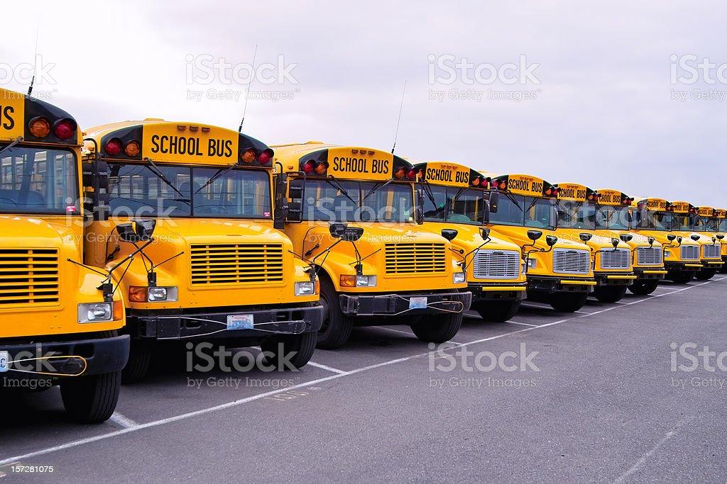 School Bus Lineup stock photo
