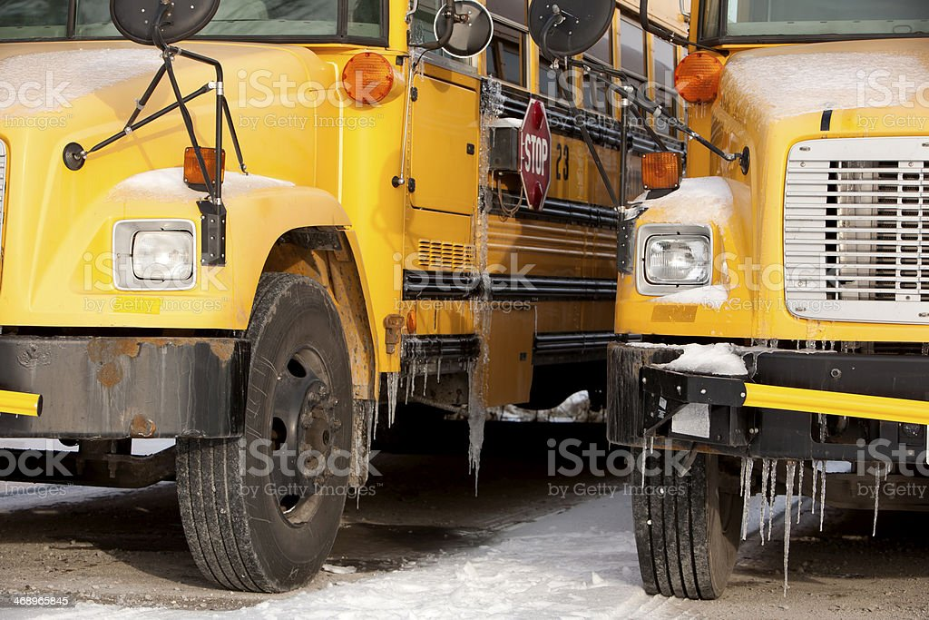 School buses covered in ice royalty-free stock photo