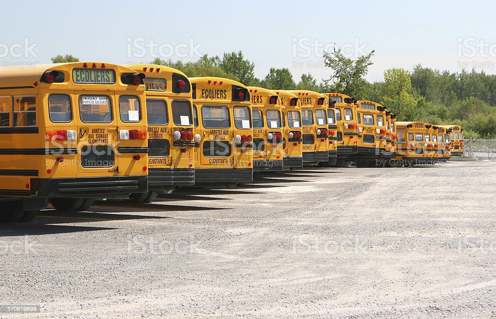 School Buses Line-up royalty-free stock photo