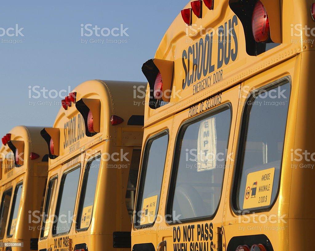 School Buses royalty-free stock photo