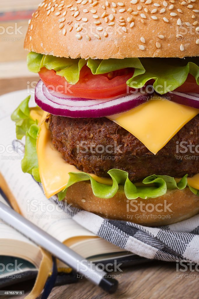 School lunch: fresh hamburger with meat and cheese stock photo
