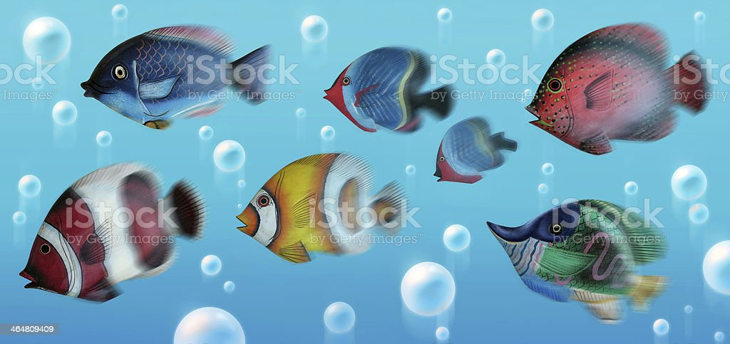 School of Painted Tropical Fish Swimming Underwater royalty-free stock photo