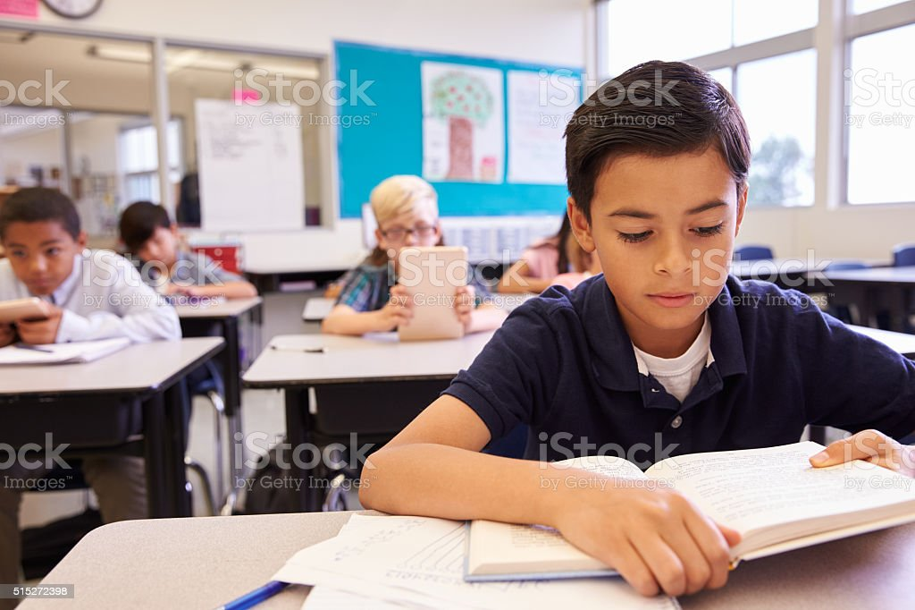Schoolboy reading at his desk in an elementary school class stock photo