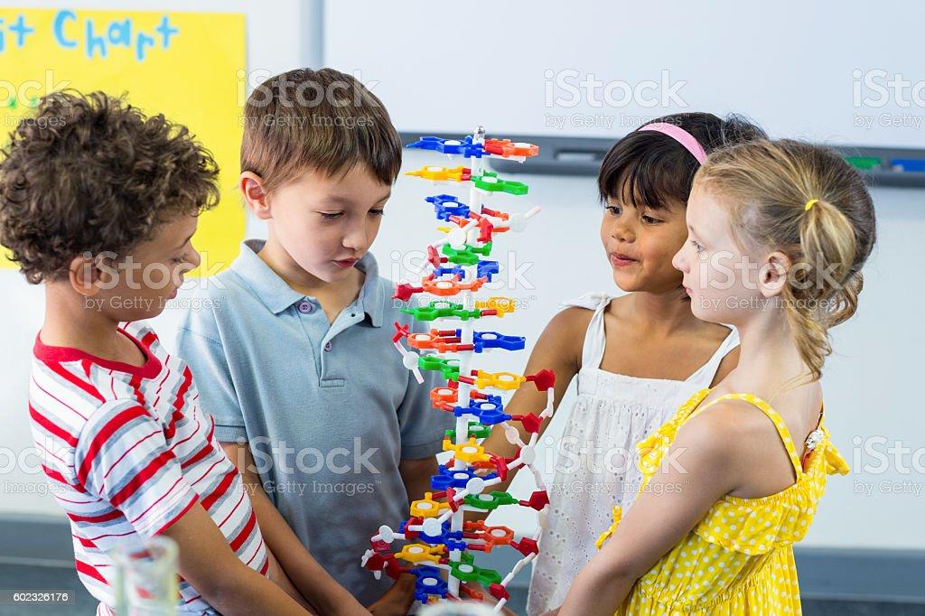 Schoolchildren holding DNA model stock photo