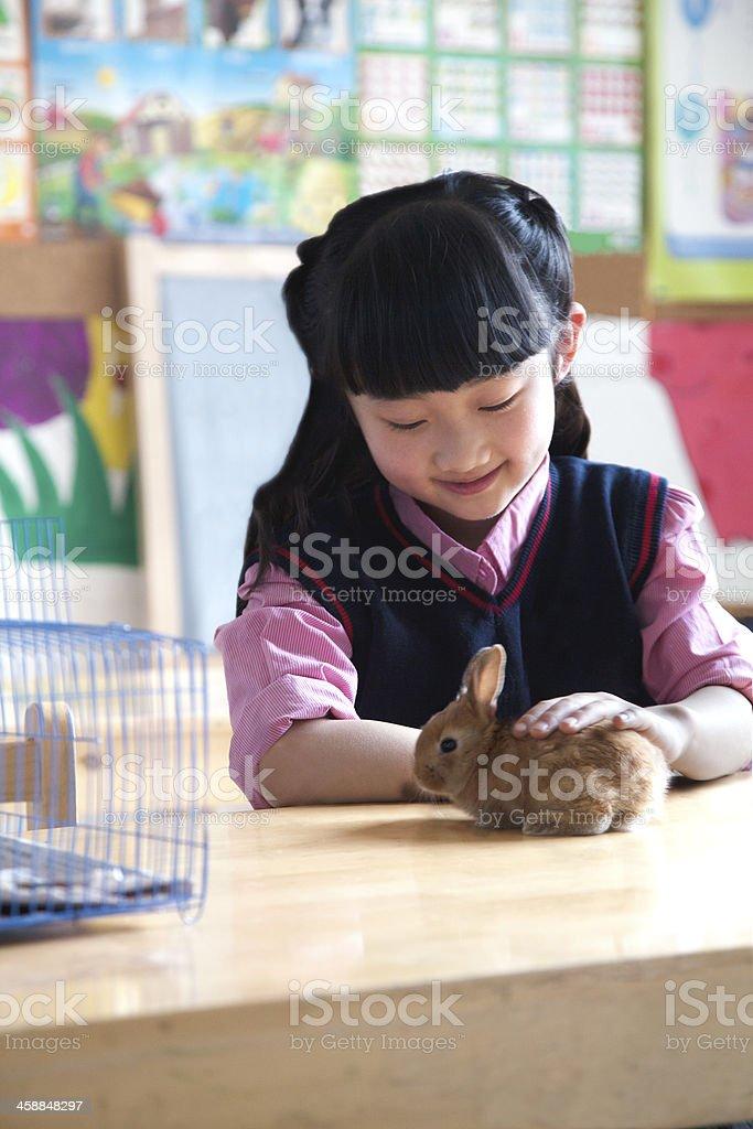 Schoolgirl petting pet rabbit in classroom stock photo