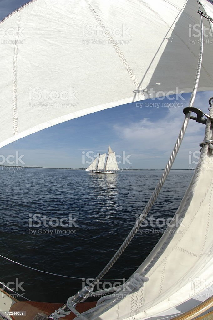 Schooner Through Sails royalty-free stock photo