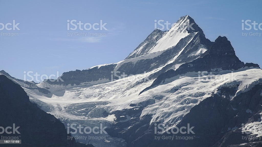Schreckhorn peak royalty-free stock photo