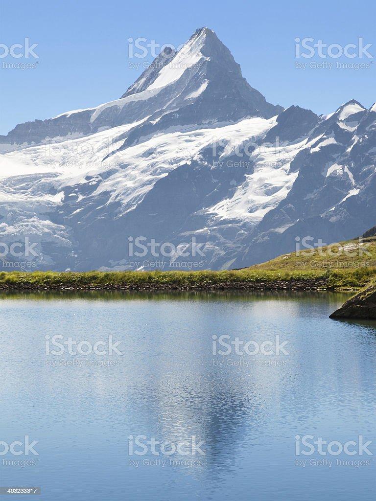 Schreckhorn reflected royalty-free stock photo