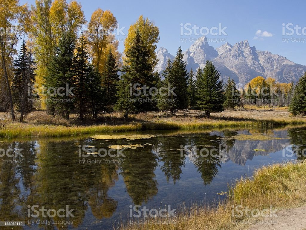 Schwabacher's Landing, Grand Teton National Park, Autumn Landscape royalty-free stock photo