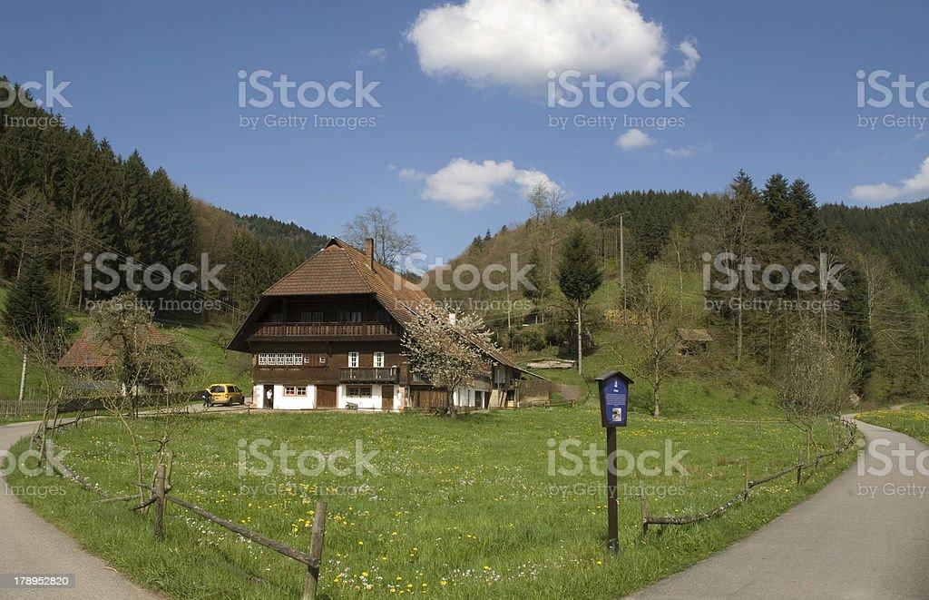 Schwarzwald stock photo