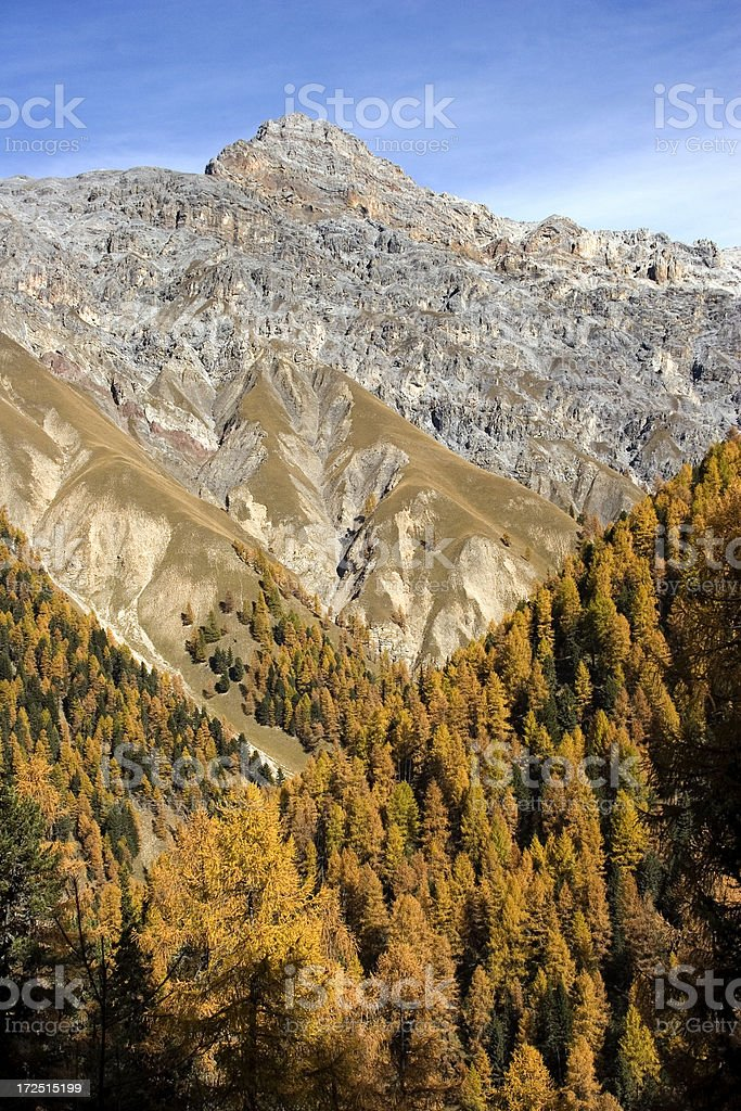 Schweizer Nationalpark royalty-free stock photo