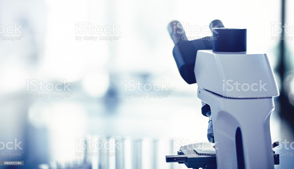 Science is worth exploring stock photo