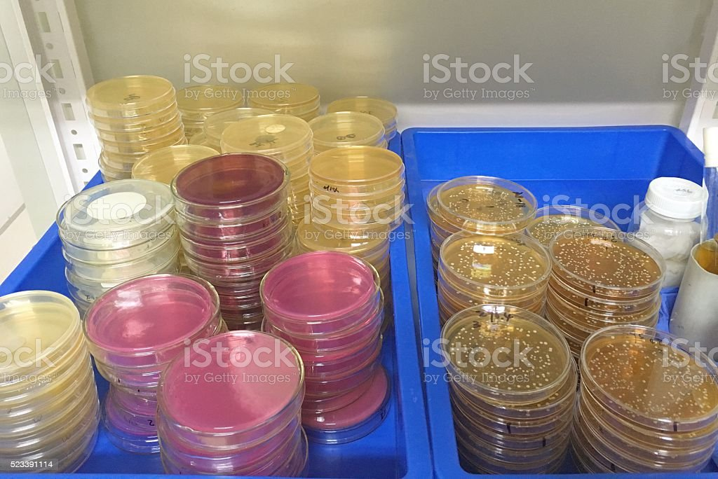 Science research detail, stock photo