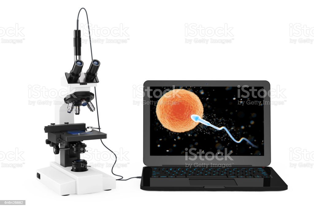 Science Technology Concept. Modern Laboratory Microscope connected to Laptop with Spermatozoon going to the Ovule View on the Screen. 3d Rendering stock photo