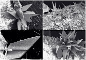 Scientific collage. Crystal photo from electron microscope