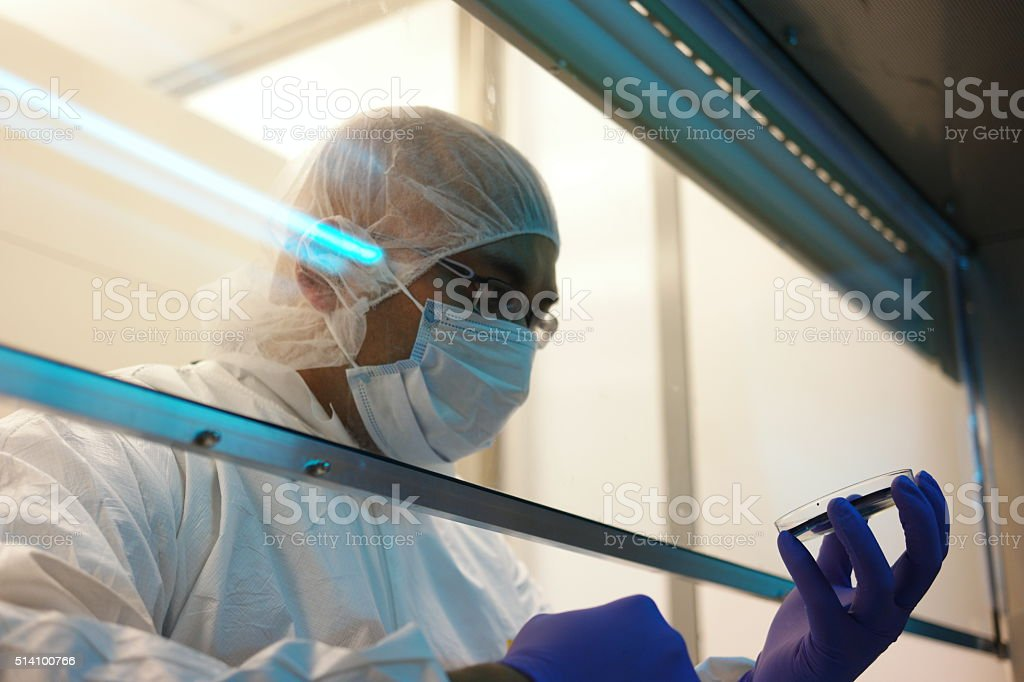 Scientific experiment stock photo