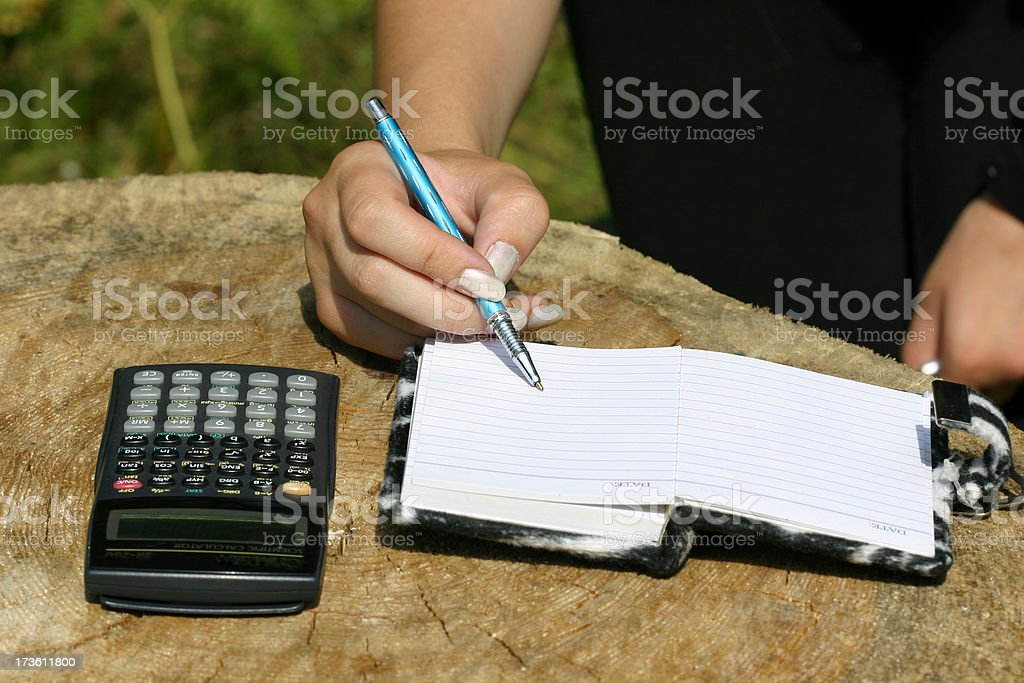 Scientific notes-2 royalty-free stock photo