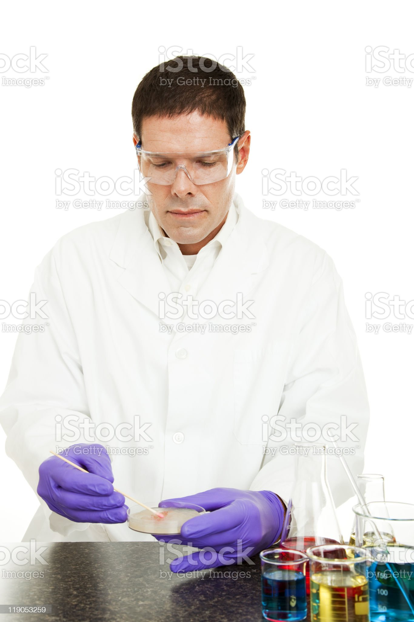 Scientific Research - Growing Culture royalty-free stock photo