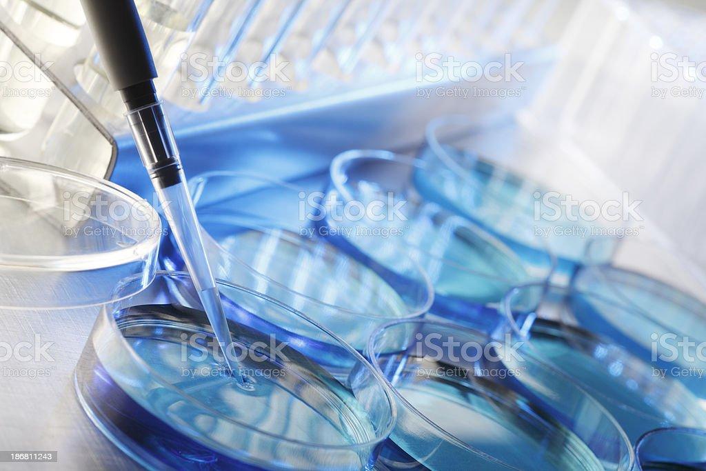 Scientific Research stock photo