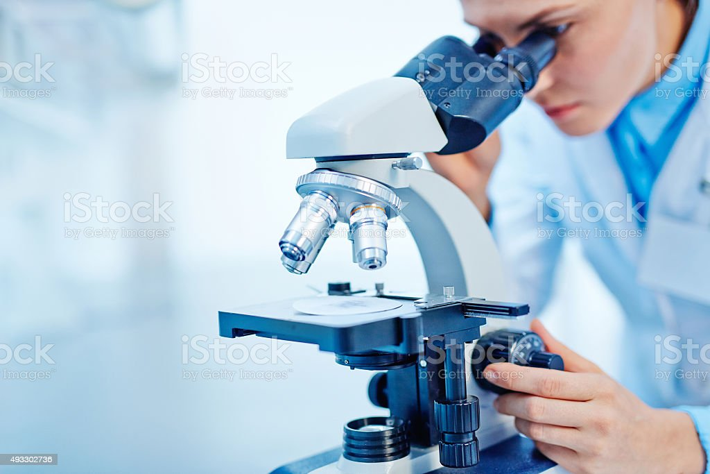 Scientific studies stock photo
