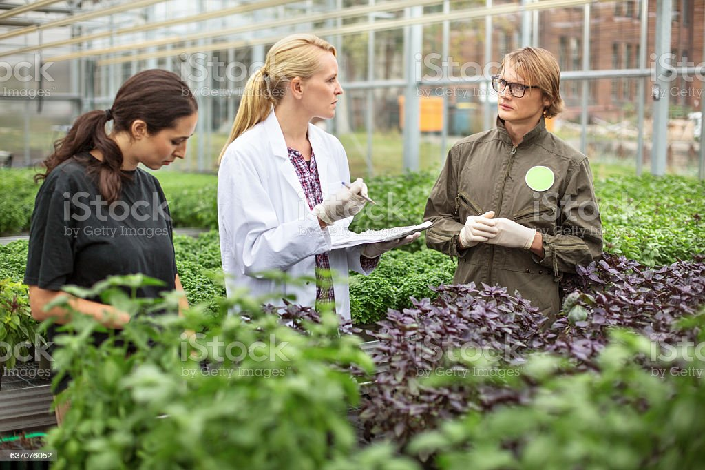 Scientist and farmer discussing in greenhouse stock photo