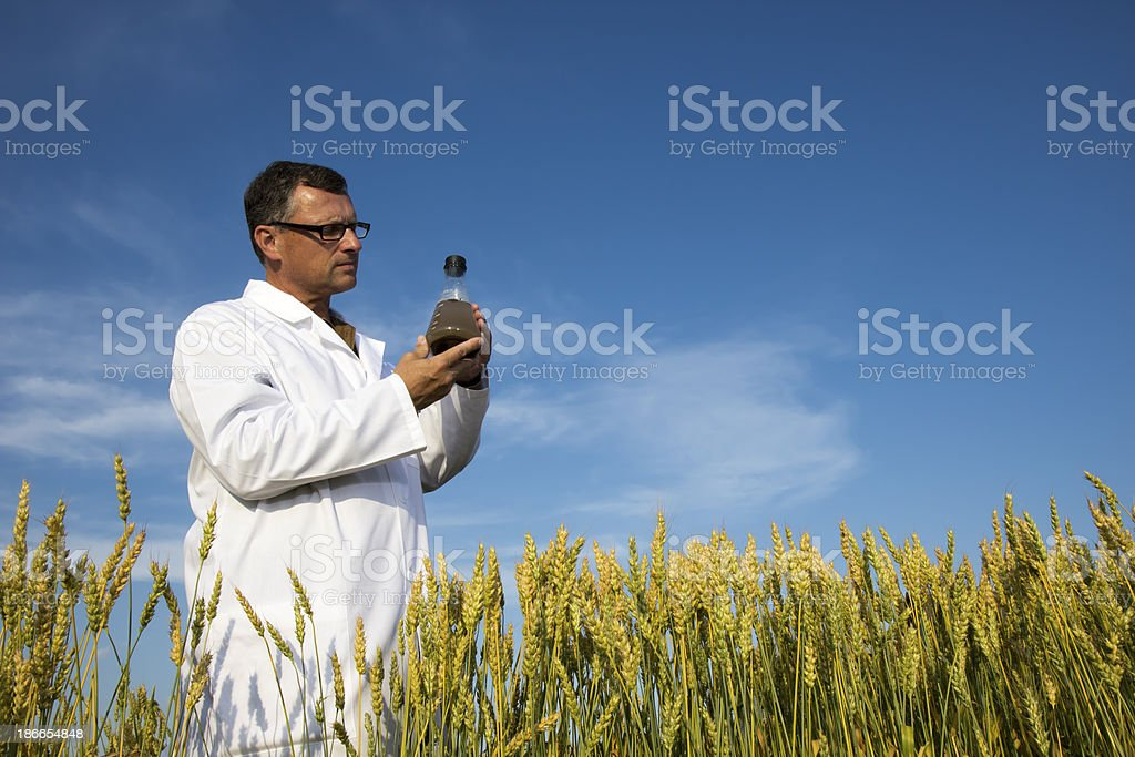 Scientist and Sample royalty-free stock photo