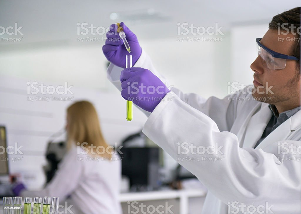Scientist Doing A Lab Research stock photo