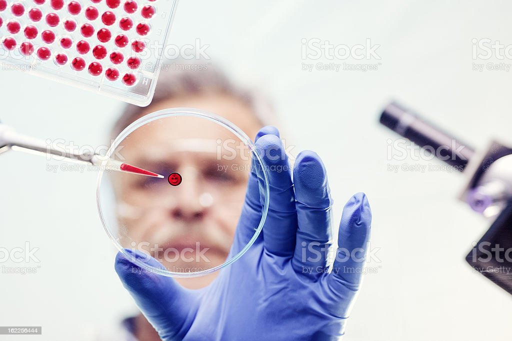 Scientist Examining and using pipette in lab experiment stock photo
