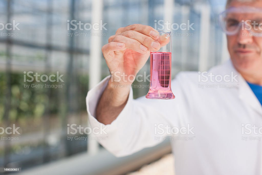 Scientist examining contents of test tube outdoors royalty-free stock photo