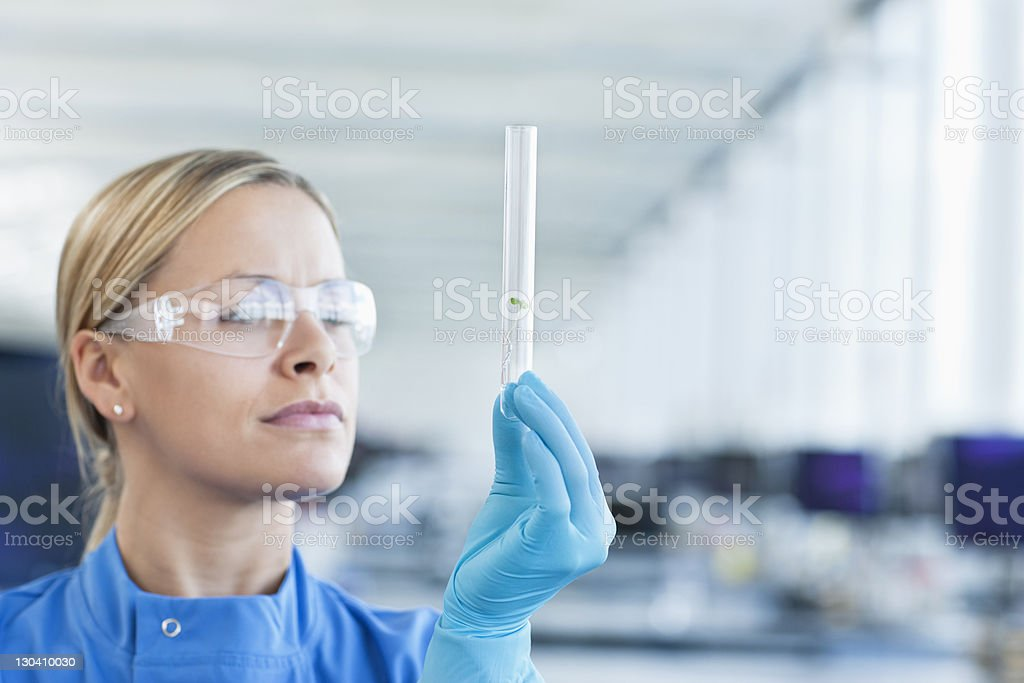 Scientist examining plants in test tube in lab royalty-free stock photo