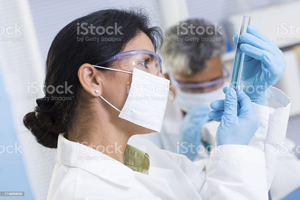 Scientist examining test tube in a chemistry lab royalty-free stock photo