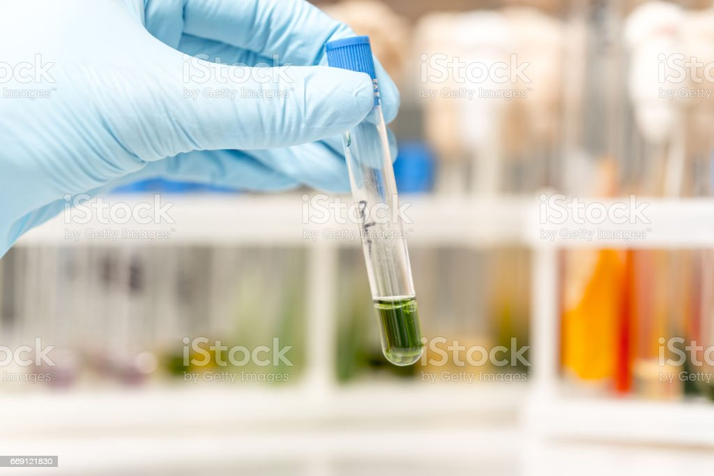 Scientist fingers holding a glass test tube in a research lab stock photo