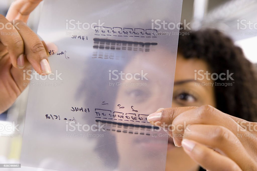 Scientist holding medical samples in laboratory stock photo